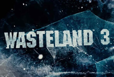 Wasteland 3 Co-op