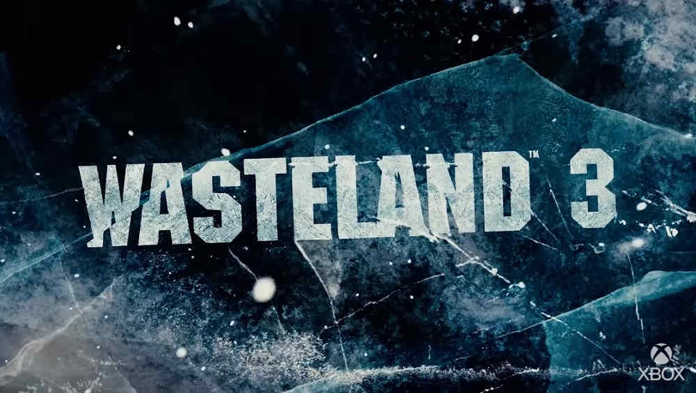 Wasteland 3 Co-op